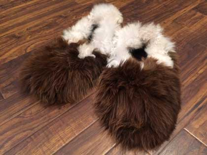 b6dcb4d6f9e AUSTRALIAN ALPACA BARN - Reversible Alpaca Fur House Slippers