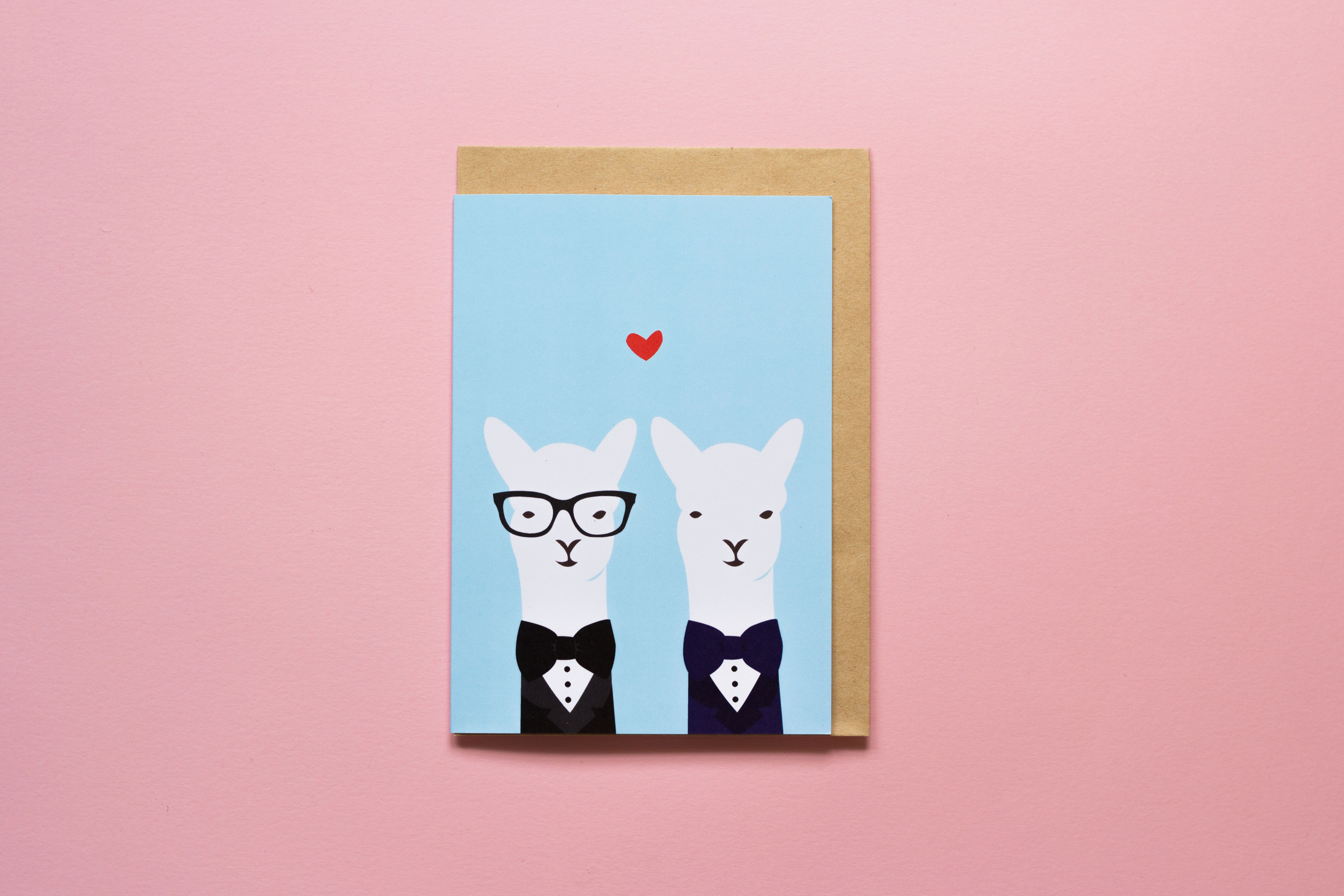 Mr & Mr Llama Greeting Card